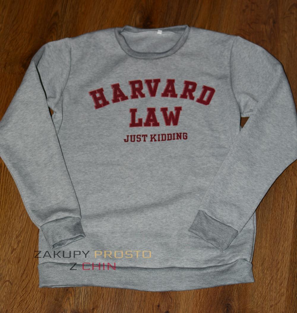 CIepła bluza Harvard Law